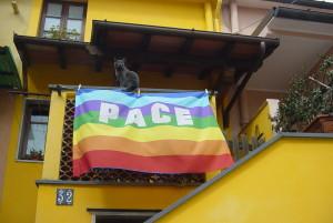 Bandiera_pace-300x201