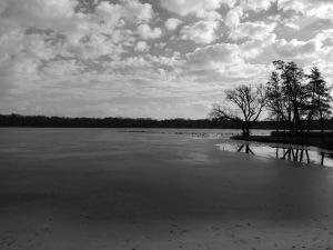 Ford Lake 3