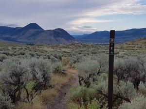 Batch hills(1)